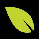 Leaf_icon_1